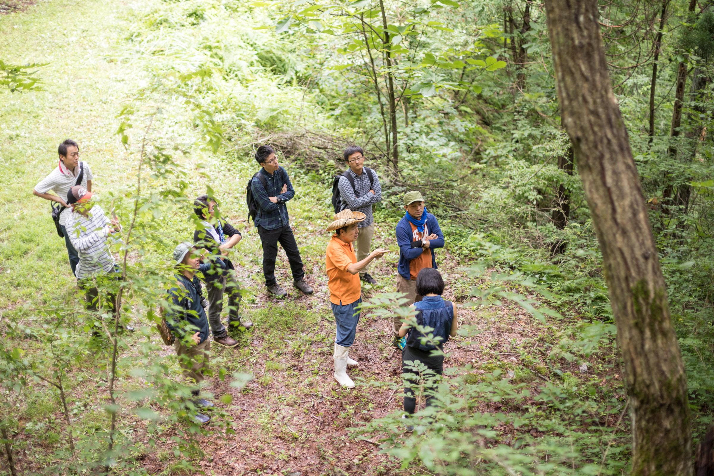 岐阜県飛騨市にある森を地元の森主のガイドで歩いた合宿